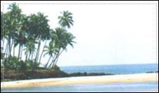 tarkarli_beach_photo_mtdc.jpg
