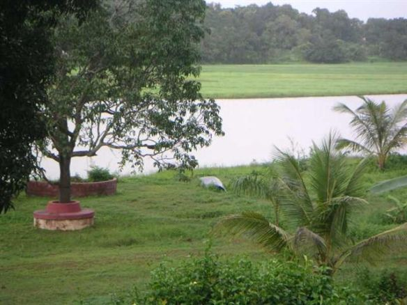 green-view-of-the-lake-olaulim.jpg