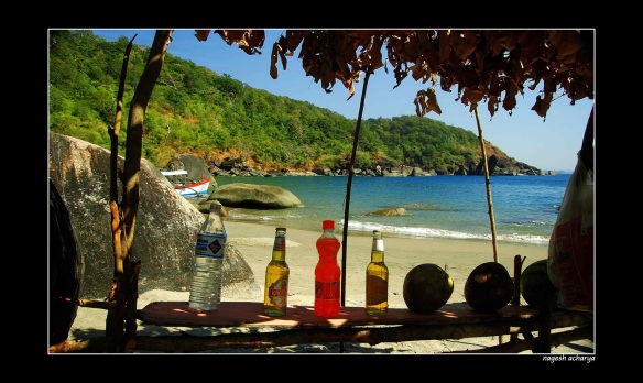 Honeymoon island, Canacona, Goa